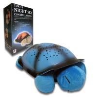 Черепаха Ночник
