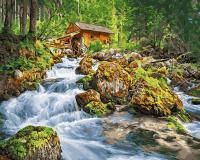 Картина по номерам ZX 23649 Дом у лесного водопада 40*50